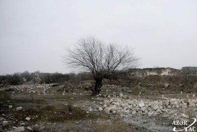 """Anar Kərimov: """"ICESCO erməni vəhşiliyi haqqında dünyanı məlumatlandıracaq"""""""