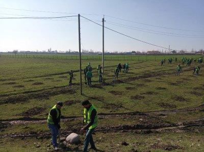 Bu gün Ağsu şəhərində Xocalı faciəsinin 29-cu il dönümünə həsr olunmuş ağacəkmə aksiyası keçirilmişdir